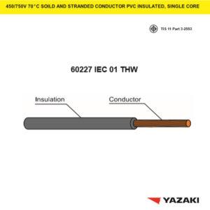 60227-IEC-01-THW